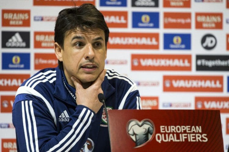 wales nationalmannschaft trainer
