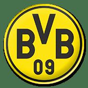 BVB Logo